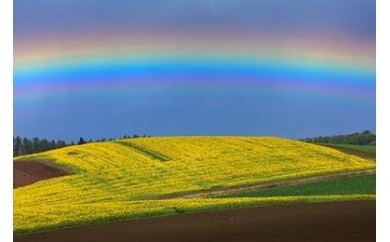 [050-32]写真家 菊地晴夫 額付き写真「虹立つ丘」 (宿泊施設利用券1枚付き)
