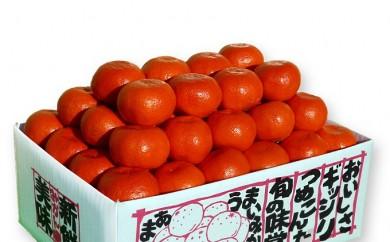 [№5803-0175]【限定品】香川県のオリジナル品種 厳選小原紅早生みかん 5kg