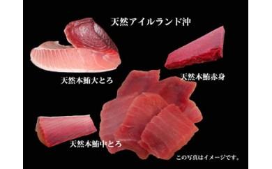 653-021 まぐろの魚二厳選 天然特上本鮪大とろ中とろ赤身セット①