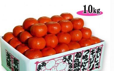 [№5803-0176]【完熟限定品】香川県のオリジナル品種 小原紅早生みかん 10kg