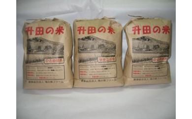 NB288 平成29年産米 升田の米セット