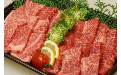 宮崎牛焼肉2点セット(もも焼肉・肩ロース焼肉)