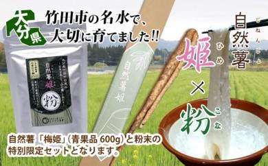 [№5632-0076]自然薯 梅姫(600g)・自然薯粉末セット