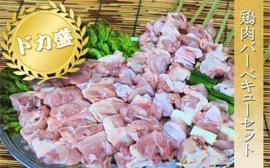 b-0017 鶏肉バーベキューセット
