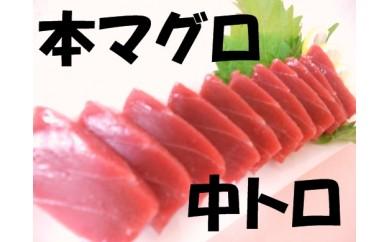B202 本マグロ(中トロ) 500g