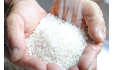 B-145 K-GAPマイスターが造る特別栽培米(5k×2袋)