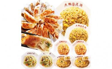 [№5855-0028]肉餃子+チャーハン3種×各2袋+塩焼きそばセット