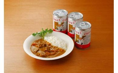 57E016 <キッチン飛騨>ビーフカレー