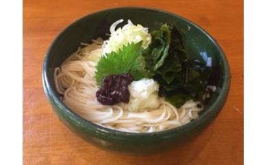 [№5684-1132]半生 氷見うどん(細麺)10人前