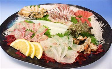 (1316)仙崎旬魚お刺身盛り合わせ7~8人前(冷蔵)