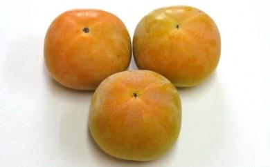香川県東かがわ市返礼品太秋柿