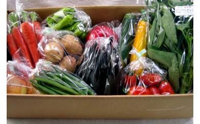 110 有機JAS認証オーガニック野菜セット