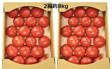 107 熟した大玉トマト2箱約8kg