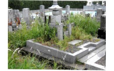 親孝行代行サービス 墓地の除草作業