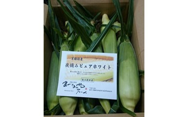 【数量限定500】京丹後産 トウモロコシ三種セット【40pt】