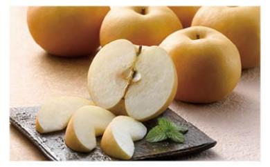 【数量限定80】季節の梨の詰め合わせ【50pt】
