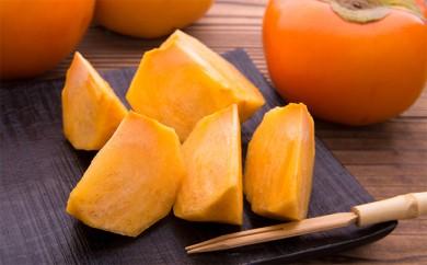 【A-117】冬季限定!福岡産 おいしい富有柿(冷蔵)18玉<12月発送開始分>