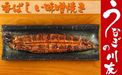 B16-3 うなぎの川友 香ばしい味噌焼き