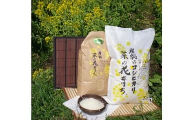 【C15】菜の花育ち®(千葉県館山産コシヒカリ)5kg×3回配送