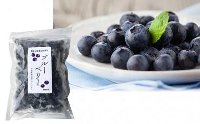 [№5701-0074]青森県中泊町産 完熟ブルーベリー(冷凍)1kg