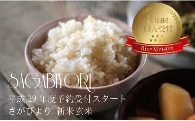 D588 【H29年産米】みやき町産『さがびより(玄米30kg)』8年連続特A受賞