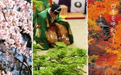 GB-1.多武峰観光ホテルのシングル宿泊券平日一人旅歓迎プラン*桜井市へ行こう!*