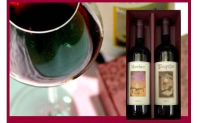 225 姉妹都市イタリア・ペーザロ市の赤ワイン2種 掛川ギフトBOX入