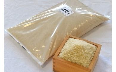 亀岡産米 コシヒカリ 6kg