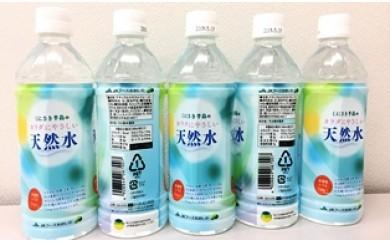 A29259 国東半島のカラダにやさしい天然水(500ml×48本)・通