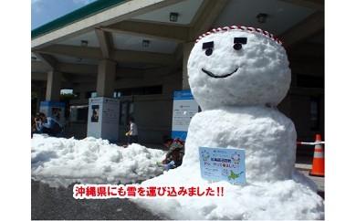 【1000-1】真夏の雪!