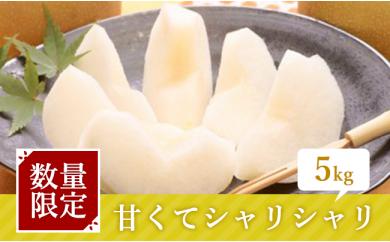 [№5672-0126]利根川さんが作った朝もぎ梨5kg ※クレジット限定