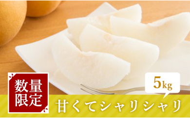 [№5672-0135]梨づくり90年 アライファームの「朝もぎ梨」5kg ※クレジット限定