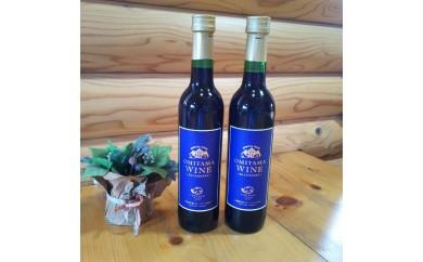 9-F 小美玉ブルーベリーワイン2本セット