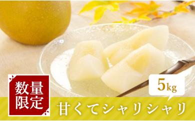 [№5672-0139]梨作り50余年!やぎさわ梨園の美味しい梨5kg※クレジット限定