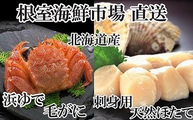 CA-22018 根室海鮮市場<直送>浜茹で毛ガニ、刺身用天然ほたて[358311]