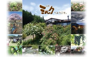 【AP-39】【マイカープラン】信州そば打ち体験と山荘ミルクで過ごす健やかな食と時間(1泊2日ペア旅行)
