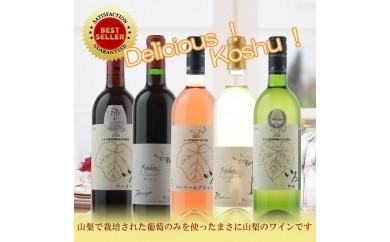 [№5768-0063]飲み比べワイン5本セットB
