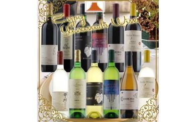 [№5768-0083]原産地呼称 希少ワイン12本セットC