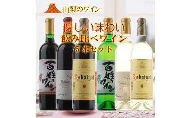[№5768-0061]飲み比べワイン6本セット