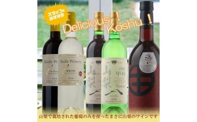 [№5768-0062]飲み比べワイン5本セットA
