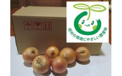 [№5676-0231]弥生農園の甘味たっぷりの玉葱 約10kg