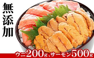 CA-44007 【生食可・無添加】ウニ・サーモンお刺身セット[358637]