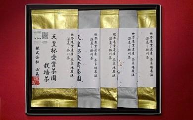 212 天皇杯受賞茶園 栽培茶プレミアム 100g×5袋(深蒸し掛川茶・ギフト箱入)