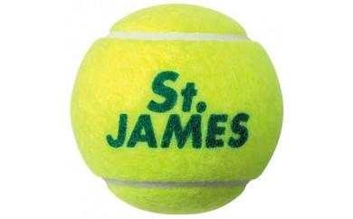 030-008 テニスボール セントジェームス イエロー 60球