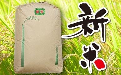 平成29年 千葉県産「コシヒカリ」30kg(玄米)