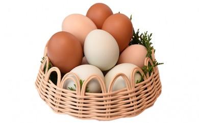[№5759-0102]おいしい上野原産のこだわり卵