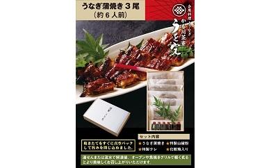 20S43うなぎ蒲焼(3尾)