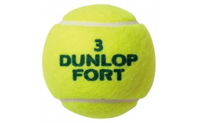 150-008 テニスボール FORT イエロー 120球