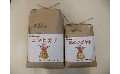 【令和元年産米:2種】羽生の農家さんが作ったお米2種8kgセット