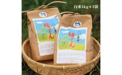 No.013 自然農法米「嬉さん」計3kg